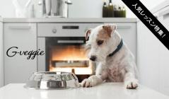 愛犬のための料理教室のセールをチェック