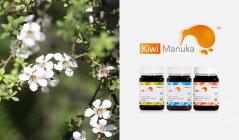 ニュージーランドの高品質マヌカハニー -Kiwi MANUKA HONEY-のセールをチェック