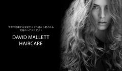 DAVID MALLET- 世界で活躍する女優やモデル達から愛される究極のヘアプロダクト-のセールをチェック