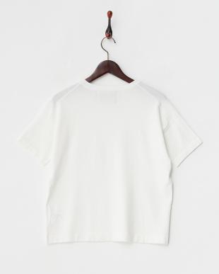 white  コットン混半袖ニットプルオーバー見る