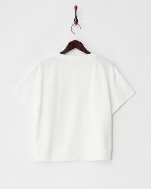 ホワイト  FOLKNIK Tシャツ見る