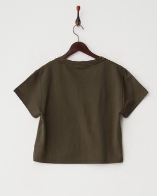 オリーブ  FOLKNIK Tシャツ見る