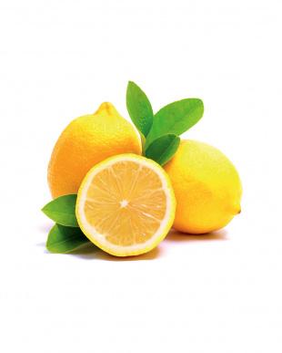 ムッジーニ フルーツバルサミコ レモン 100mL見る