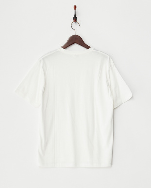 オフホワイト  BASIC Tシャツ見る