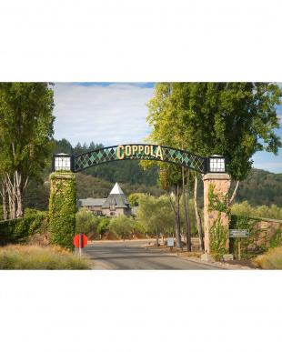 Claret California 2014見る