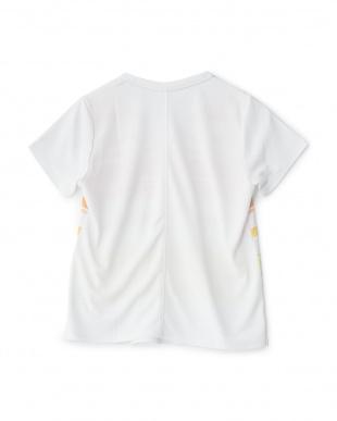 ホワイト  グラデーションボーダールーズTシャツ見る