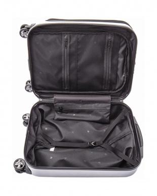 シルバー  フラッシュ スーツケース34L見る