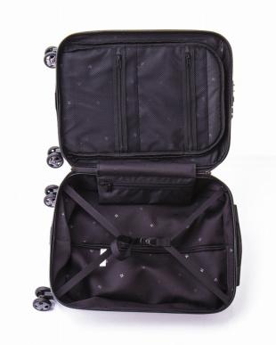 ワイン  フラッシュ スーツケース34L見る
