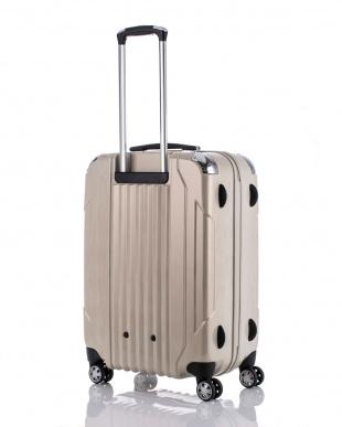 ヘアラインホワイト  キャパリエジッパーハードM スーツケース67L見る