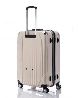 ヘアラインホワイト  キャパリエフレームハードL スーツケース100L見る