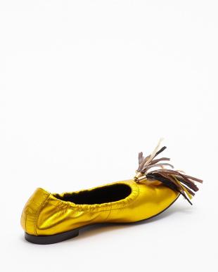 ゴールド  Ballet Shoes見る