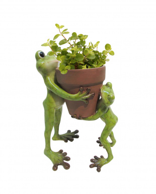 Animal Pot  Cover(Frog Pair)見る