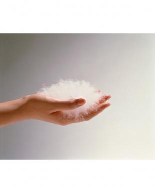 ホワイト ベッドタイプキルトダウンカセット(羽毛ふとん) シングルロング見る