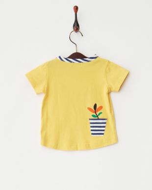 カラシ サボテンTシャツ見る