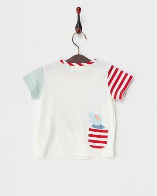 オフホワイト  ワニTシャツ見る