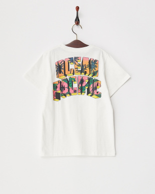 WHT  キッズ バックロゴプリント Tシャツ見る