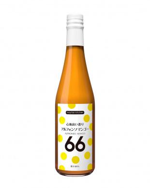 アルフォンソマンゴー66(66%果汁飲料) 500mL 6本セット見る