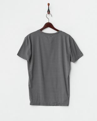 グレー  細ボーダー半袖Tシャツ見る
