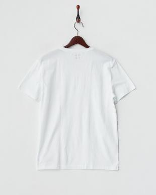 ホワイト  Vネック 半袖Tシャツ見る