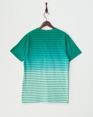 GREEN  ボーダーグラデーションクルーネックTシャツ見る