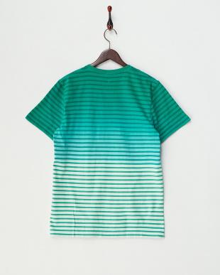 GREEN  ボーダーグラデーションVネックTシャツ見る