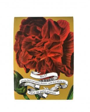 Fleur de petit trianon Carnation見る