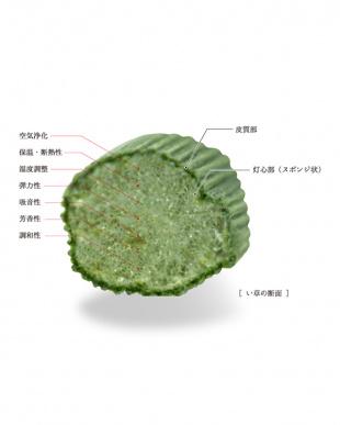 ベージュ  ぼかし友禅 亜紋 い草座布団 55×58cm見る