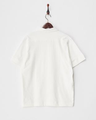 ホワイト 20/-度詰め天竺 ポロシャツ見る