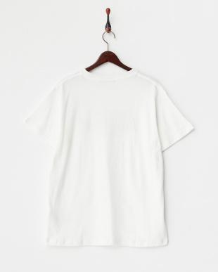 White  梨地Print Tシャツ REGION柄 DOORS見る