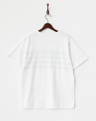 White  クレーターインレイ ラインTシャツ DOORS見る
