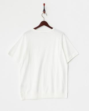 White  梨地Pocket Tシャツ DOORS見る
