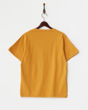 Mustard  Tennessee Cotton ショートスリーブ Tシャツ DOORS見る