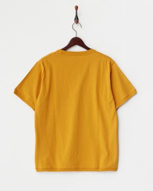 Mustard  Open End ショートスリーブTシャツ DOORS見る