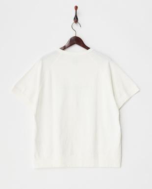 White  Metro Print Tシャツ DOORS見る