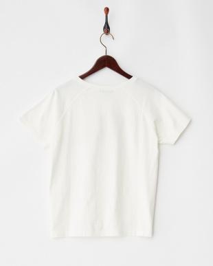 オフ  フロッキーロゴTシャツ Sonny Label見る