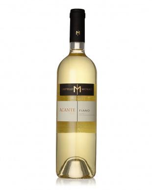 果実味たっぷりの南イタリアワイン3本セット見る