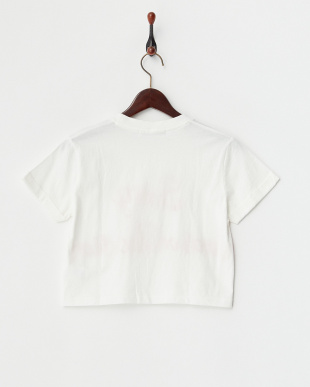WHITE DK ON VACATION R/UP SLV TEE見る