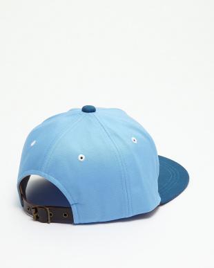 BLUE  WL/ツバウラWordCAP見る