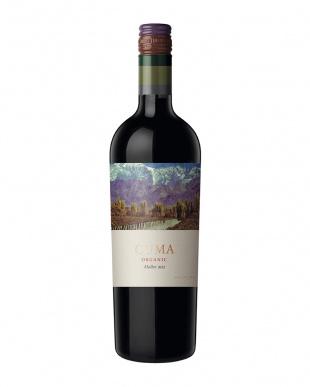 ニューワールドワイン 赤飲み比べ6本セット見る