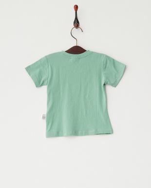 グリーン  グラデーション猫プリントTシャツ見る