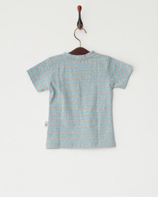 グレー×ブルー  ボーダー猫Tシャツ見る