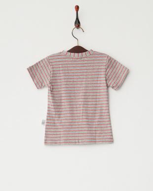 グレー×レッド  ボーダー猫Tシャツ見る