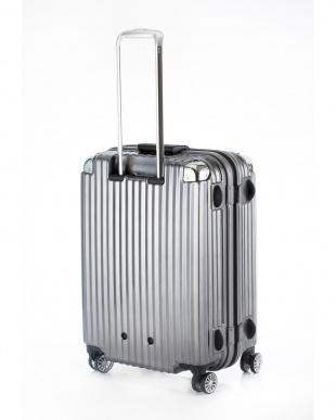 ブラックヘアライン  ストリークL スーツケース75L見る