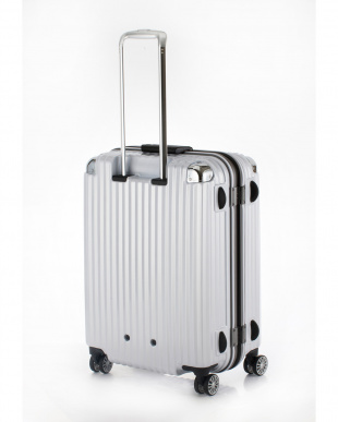 ホワイトヘアライン  ストリークL スーツケース75L見る