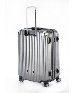 ブラックヘアライン  ストリークLL スーツケース100L見る