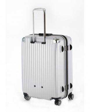 ホワイトヘアライン  ストリークLL スーツケース100L見る