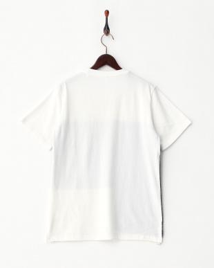 シロ  前身ニットTシャツ見る