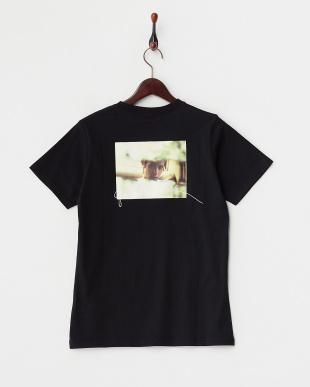 BLACK バックフォト 半袖Tシャツ見る