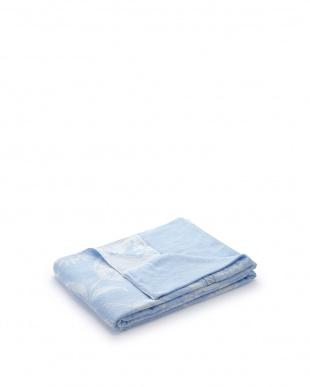 ブルー  先染めジャガード織タオルケット シングル見る
