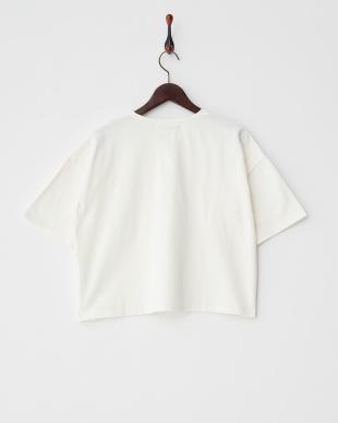 WHITE  オーガニックコットンVネックTシャツ(5分袖)見る